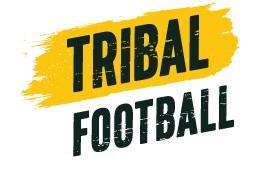 Avatar - Tribal Football