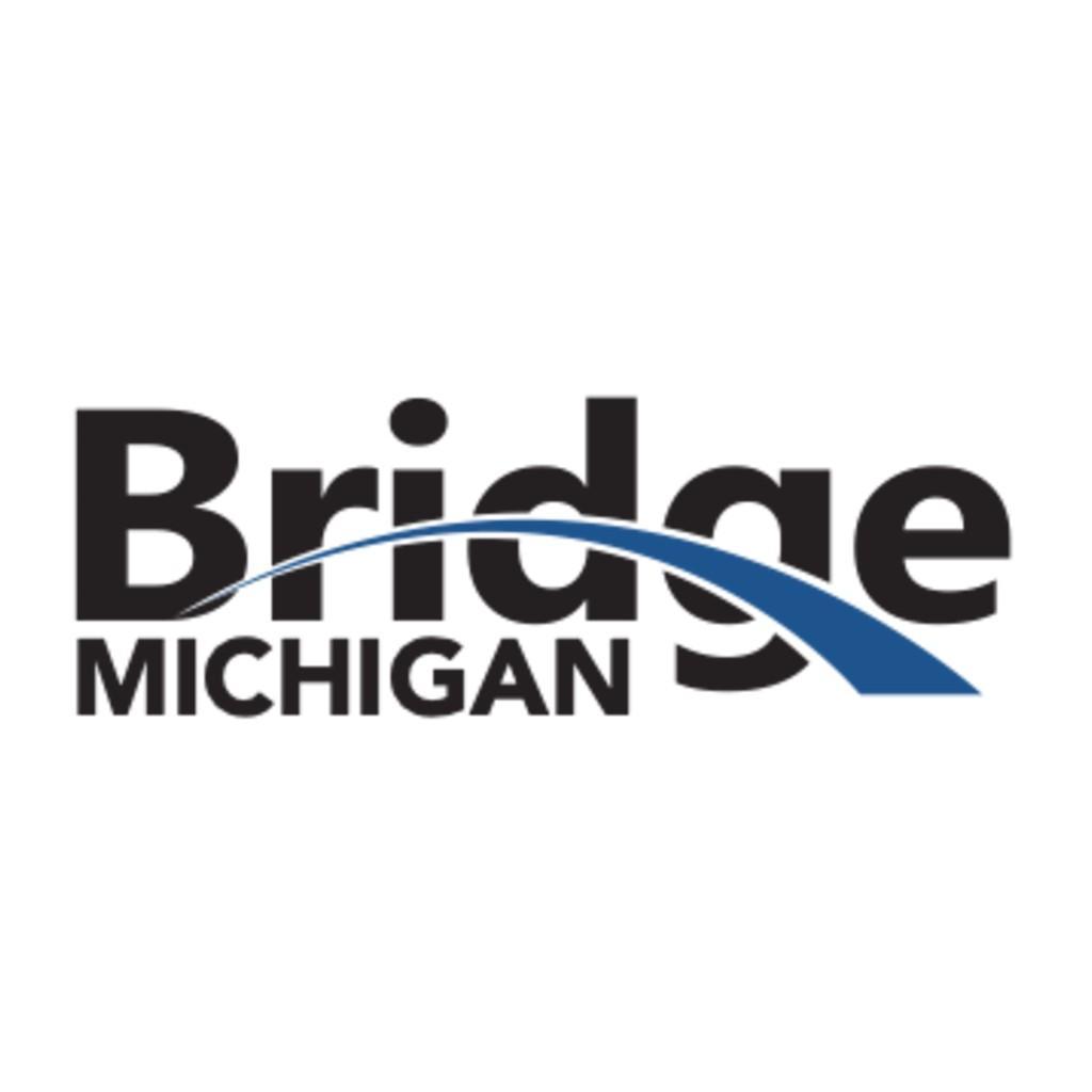 Avatar - Bridge Michigan