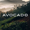 Avatar - Avocado Mattress