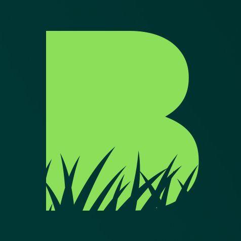 Avatar - Backyard Boss